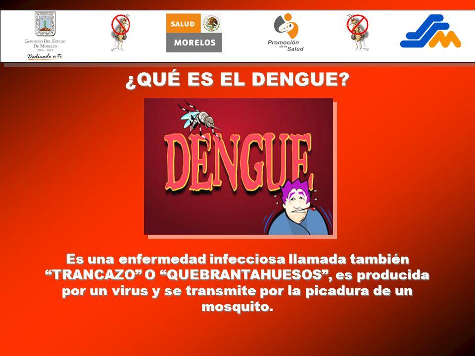 Es una enfermedad infecciosa llamada también TRANCAZO O QUEBRANTAHUESOS, es producida por un virus y se transmite por la picadura de un mosquito Es un