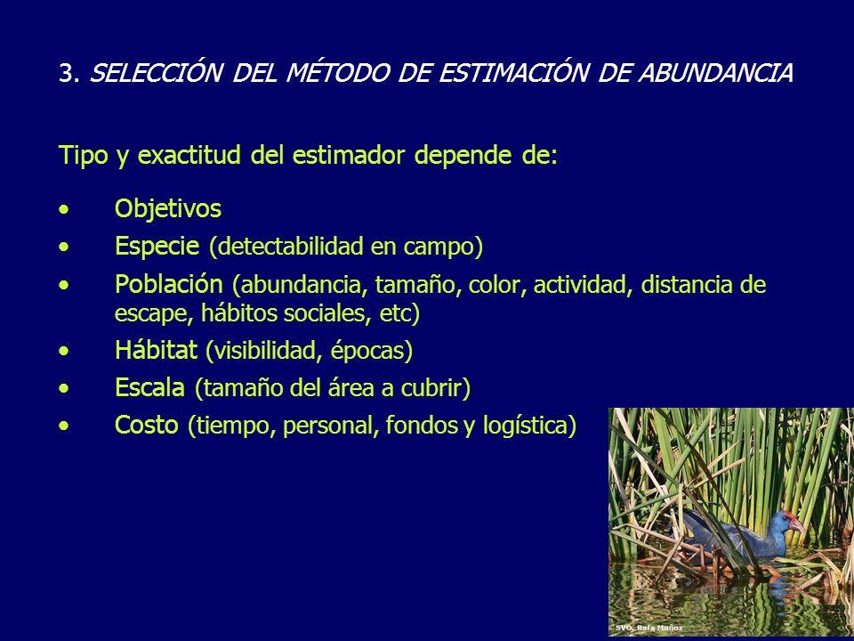 Objetivos Especie (detectabilidad en campo) Población (abundancia, tamaño, color, actividad, distancia de escape, hábitos sociales, etc) Hábitat (visi