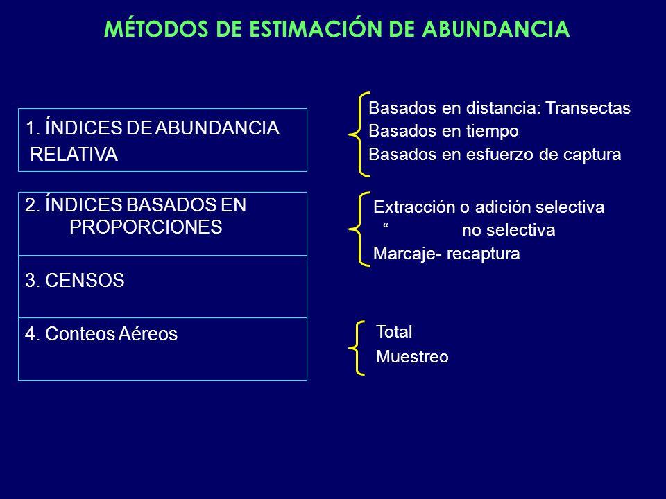 1. ÍNDICES DE ABUNDANCIA RELATIVA 2. ÍNDICES BASADOS EN PROPORCIONES 3. CENSOS 4. Conteos Aéreos Basados en distancia: Transectas Basados en tiempo Ba