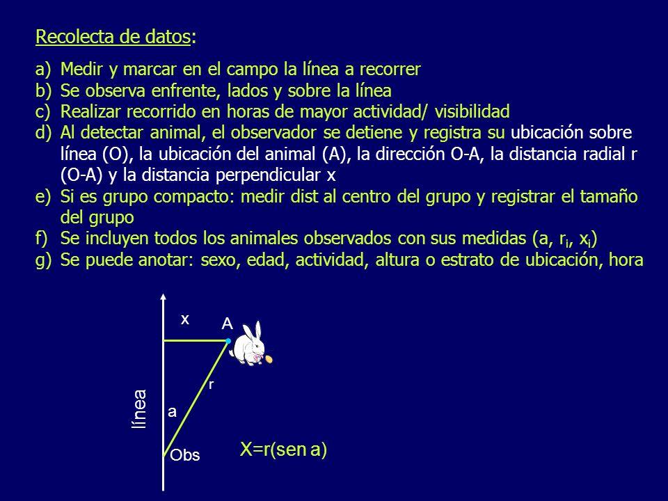 Recolecta de datos: a)Medir y marcar en el campo la línea a recorrer b)Se observa enfrente, lados y sobre la línea c)Realizar recorrido en horas de ma