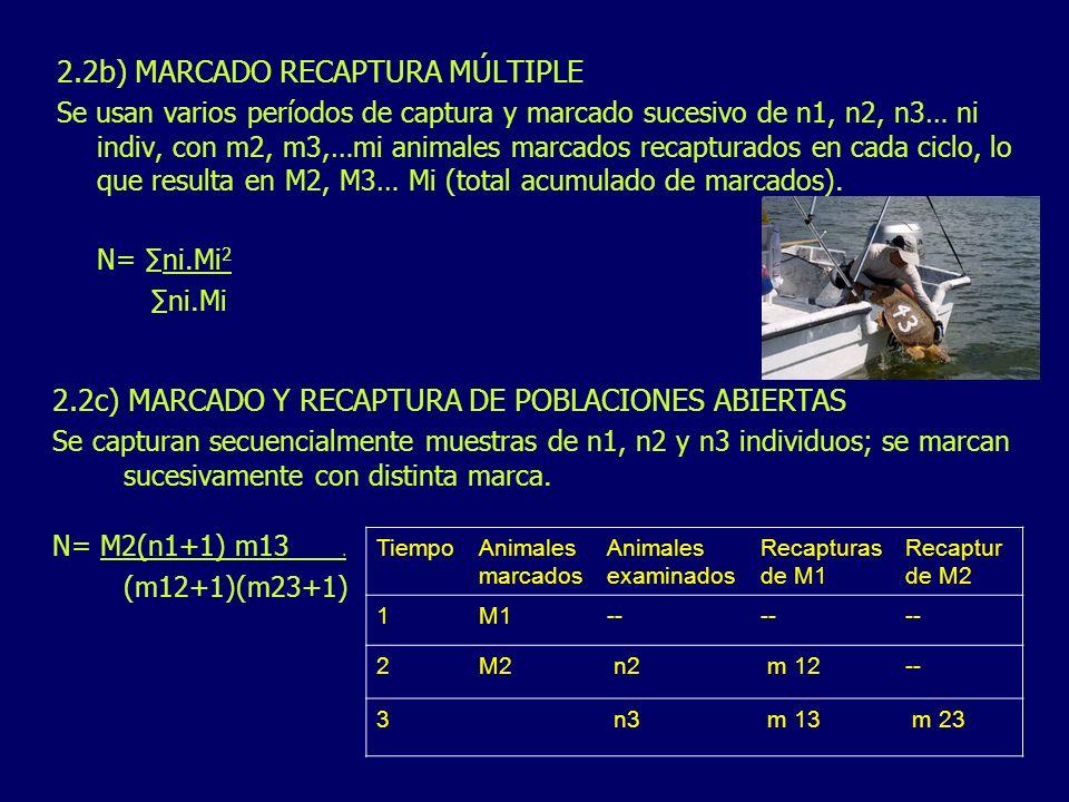 2.2b) MARCADO RECAPTURA MÚLTIPLE Se usan varios períodos de captura y marcado sucesivo de n1, n2, n3… ni indiv, con m2, m3,…mi animales marcados recap