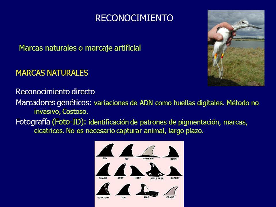 RECONOCIMIENTO MARCAS NATURALES Reconocimiento directo Marcadores genéticos: variaciones de ADN como huellas digitales. Método no invasivo, Costoso. F