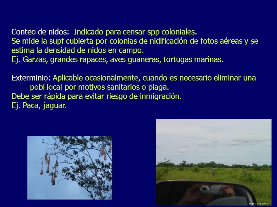 Conteo de nidos: Indicado para censar spp coloniales. Se mide la supf cubierta por colonias de nidificación de fotos aéreas y se estima la densidad de