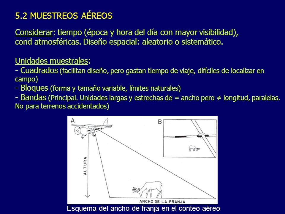 5.2 MUESTREOS AÉREOS Considerar: tiempo (época y hora del día con mayor visibilidad), cond atmosféricas. Diseño espacial: aleatorio o sistemático. Uni