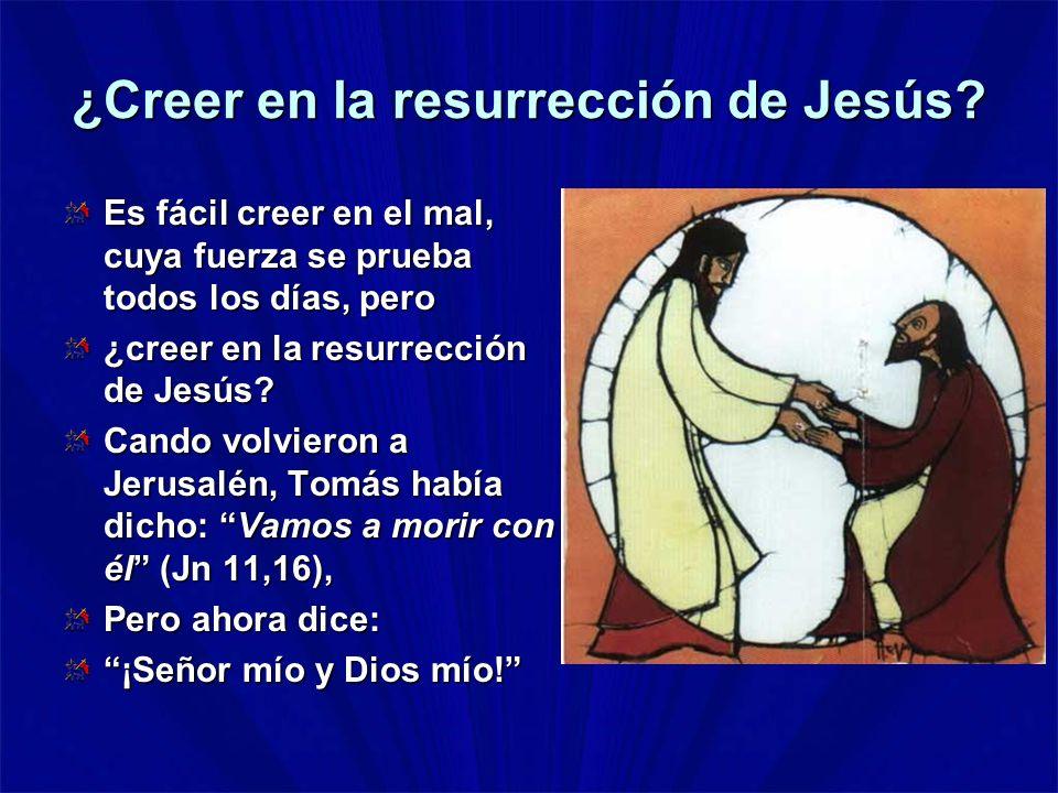 ¿Creer en la resurrección de Jesús? Es fácil creer en el mal, cuya fuerza se prueba todos los días, pero ¿creer en la resurrección de Jesús? Cando vol