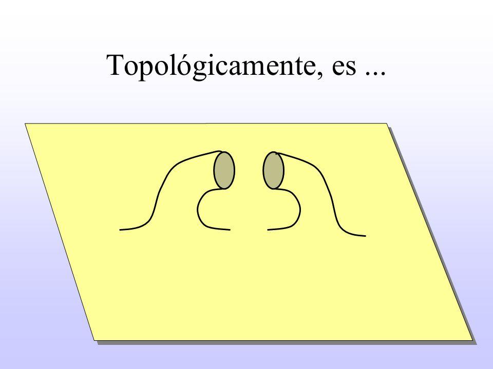 Topológicamente, es...