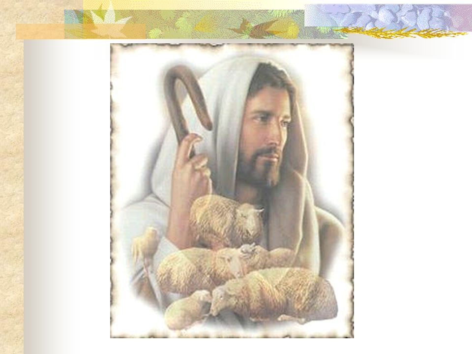 Reflections on John 10:1 - 10 Reflexiones en Juan 10:1 - 10 by Fr.