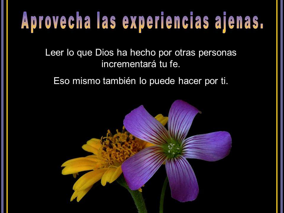 Nada apaga la fe como las circunstancias adversas, pero la Biblia promete: «A los que aman a Dios, todas las cosas les ayudan a bien, esto es, a los q