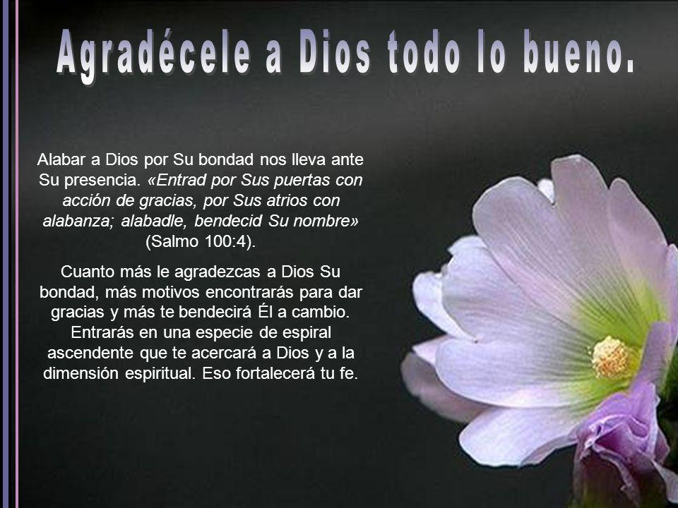 Alabar a Dios por Su bondad nos lleva ante Su presencia.