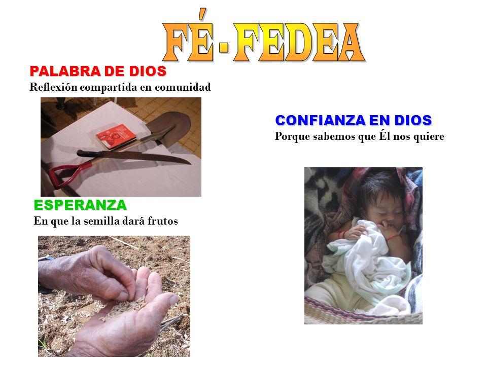 CONFIANZA EN DIOS Porque sabemos que Él nos quiere PALABRA DE DIOS Reflexión compartida en comunidad ESPERANZA En que la semilla dará frutos