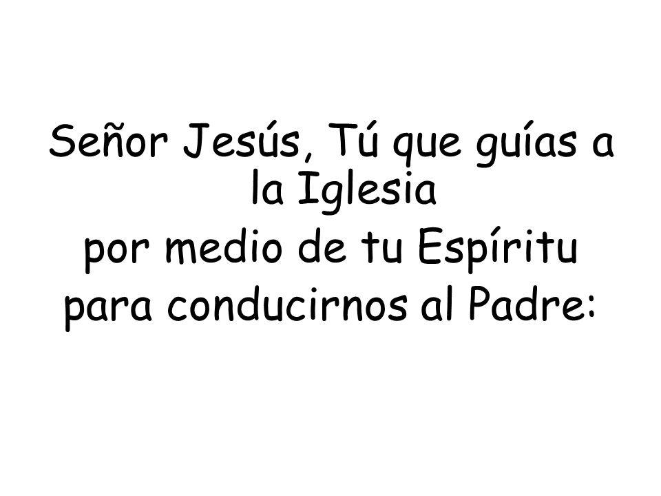 Señor Jesús, Tú que guías a la Iglesia por medio de tu Espíritu para conducirnos al Padre: