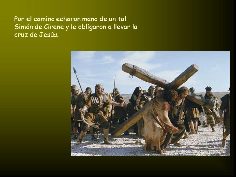 Por el camino echaron mano de un tal Simón de Cirene y le obligaron a llevar la cruz de Jesús.