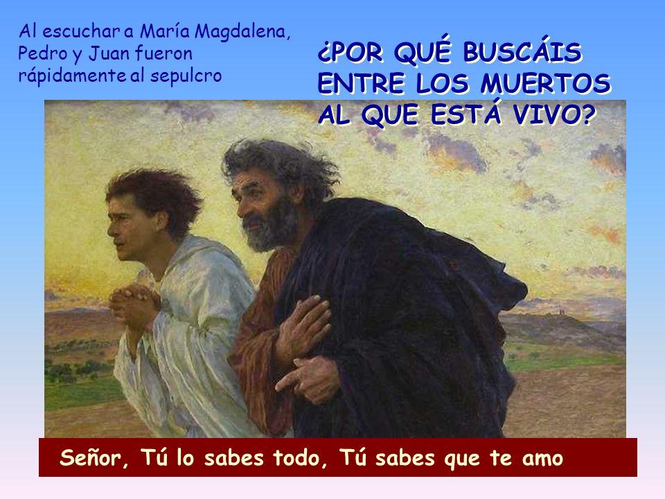 Al escuchar a María Magdalena, Pedro y Juan fueron rápidamente al sepulcro ¿POR QUÉ BUSCÁIS ENTRE LOS MUERTOS AL QUE ESTÁ VIVO? Señor, Tú lo sabes tod