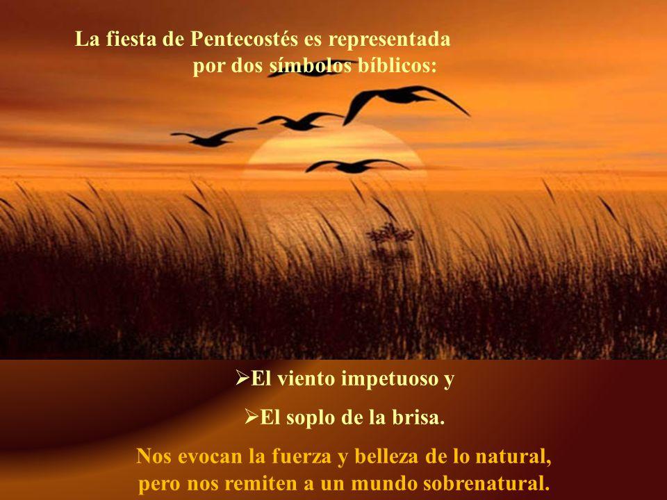 El Espíritu nos ofrece la paz y, gracias al perdón de Dios, inicia en cada uno de nosotros una nueva creación y una nueva revelación de su voluntad.