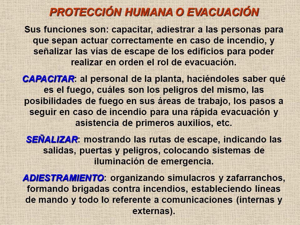 ORGANIGRAMA DE EVACUACIÓN DIRECTOR AYUDANTE LÍDER DE PISO GUARDIA OPERATIVA LÍDER DE SECTORASISTENTE GRUPO OPERATIVO DE EXTINCIÓN BOMBEROS DE GUARDIA