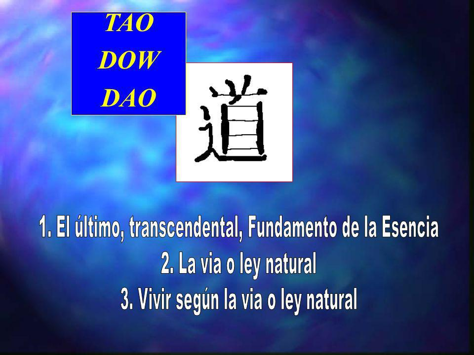 Principales ideas del pensamiento Taoista n Metafísica –Ontologia/Cosmologia n El TAO n Te n Yin/Yang n El orden natural (el universo y todas las cosa