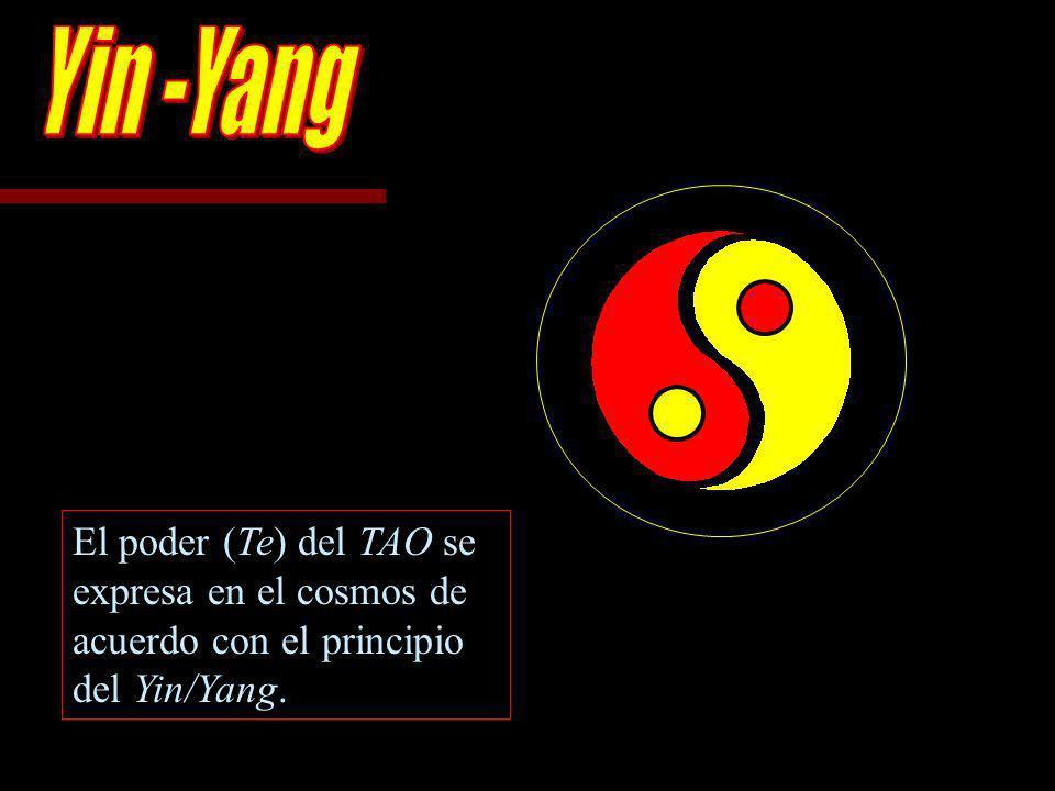 Te (Duh) denota un poder moral o virtud característica de la persona que adopta la correcta forma de conducta.... [En el Taoísmo], `te es la virtud o