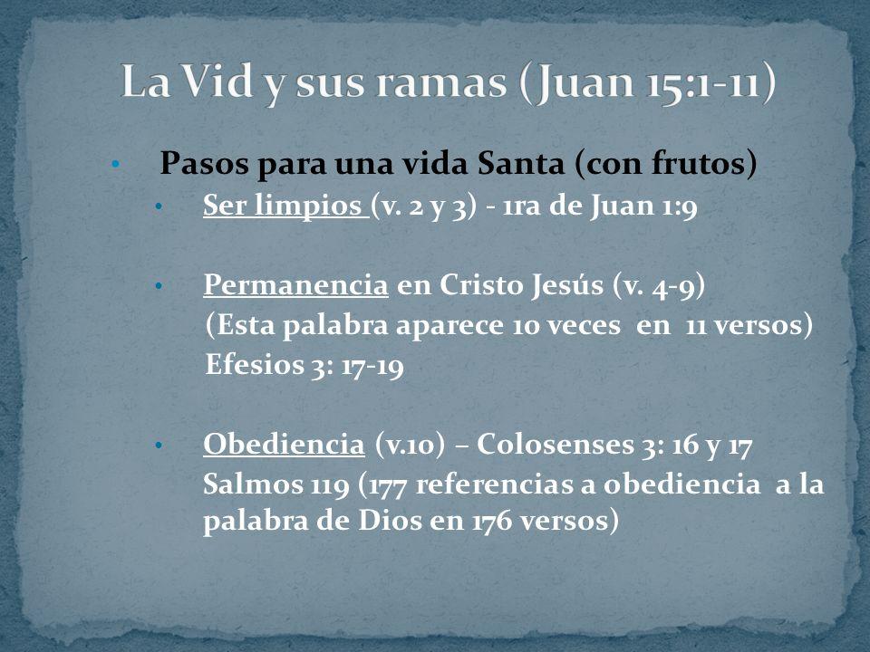 Pasos para una vida Santa (con frutos) Ser limpios (v. 2 y 3) - 1ra de Juan 1:9 Permanencia en Cristo Jesús (v. 4-9) (Esta palabra aparece 10 veces en