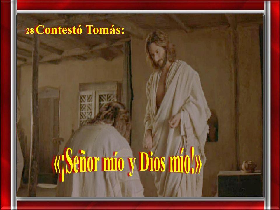 27 Luego dijo a Tomás: - «Trae tu dedo, aquí tienes mis manos; trae tu mano y métela en mi costado; y no seas incrédulo, sino creyente.»