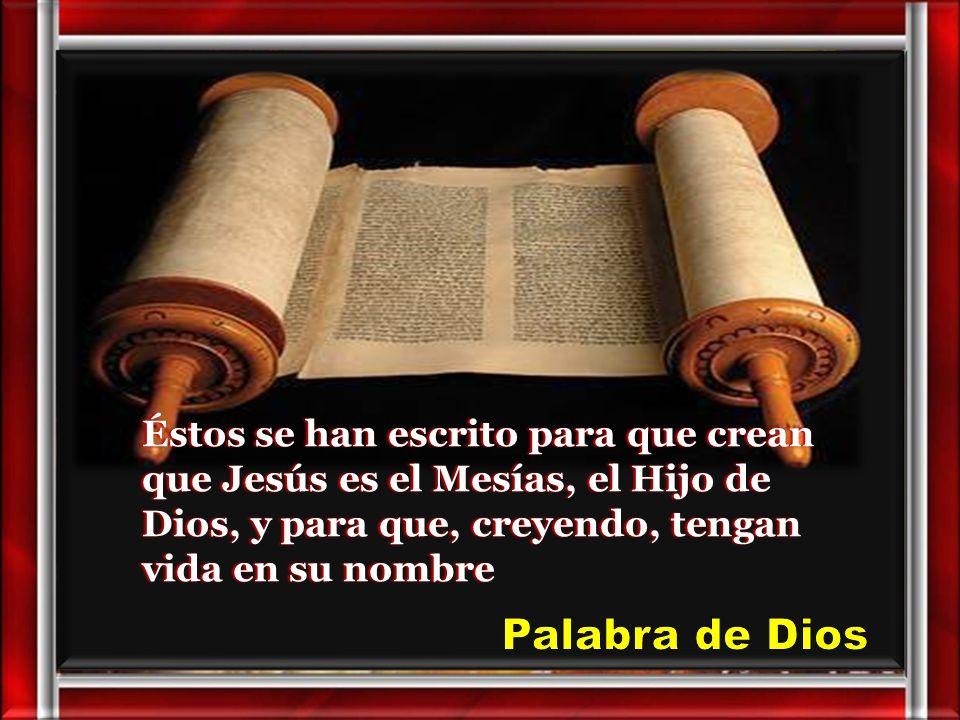 30 Muchos otros signos, que no están escritos en este libro, hizo Jesús a la vista de los discípulos.