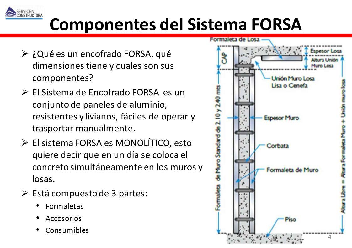 y Componentes del Sistema FORSA ¿Qué es un encofrado FORSA, qué dimensiones tiene y cuales son sus componentes? El Sistema de Encofrado FORSA es un co