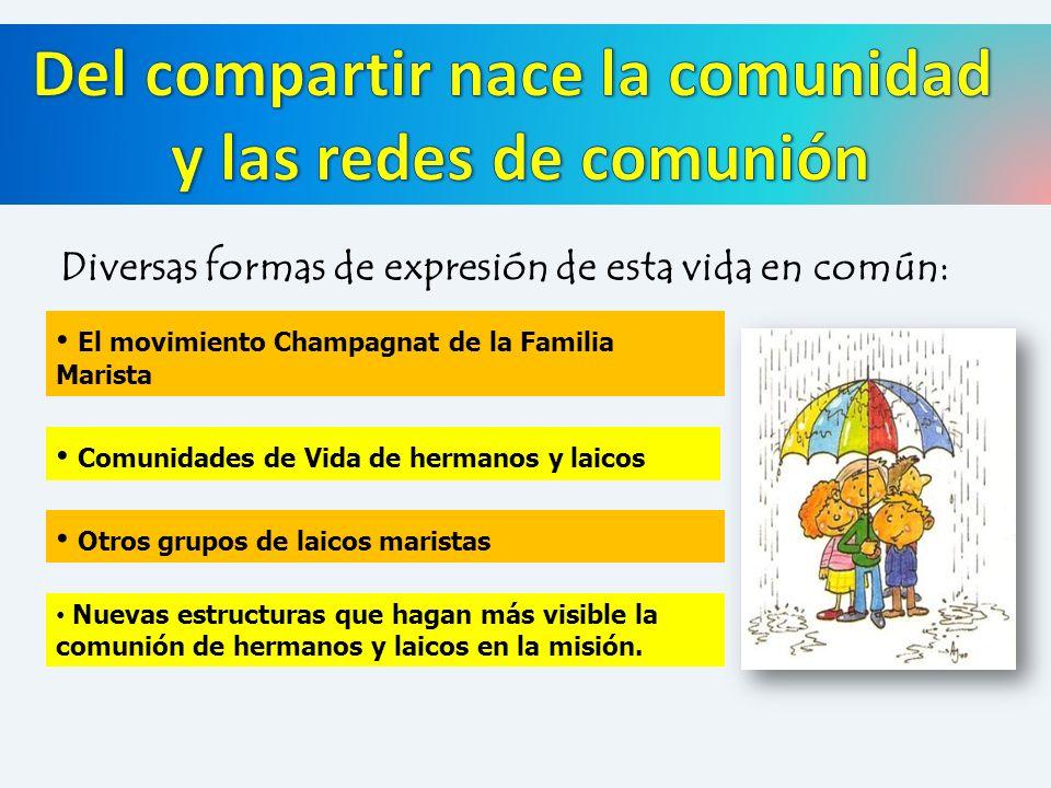 Diversas formas de expresión de esta vida en común: El movimiento Champagnat de la Familia Marista Comunidades de Vida de hermanos y laicos Otros grup