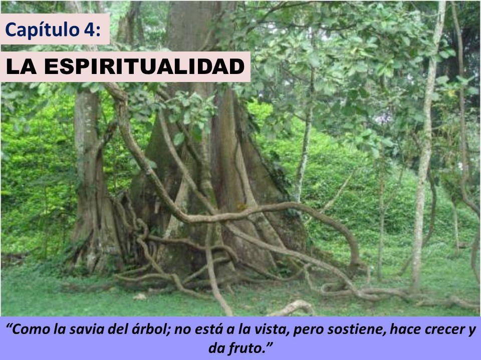 Capítulo 4: LA ESPIRITUALIDAD Como la savia del árbol; no está a la vista, pero sostiene, hace crecer y da fruto.