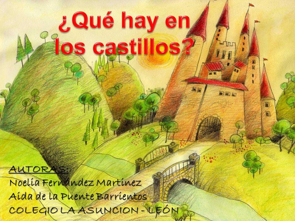 AUTORAS: Noelia Fernández Martinez Aida de la Puente Barrientos COLEGIO LA ASUNCION - LEÓN
