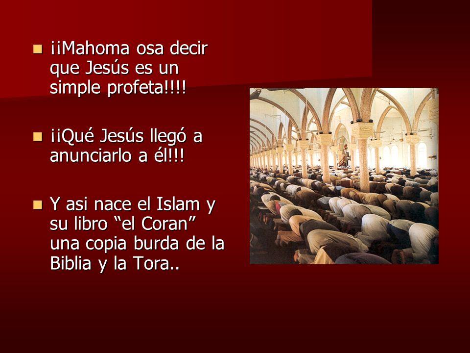 ¡¡Mahoma osa decir que Jesús es un simple profeta!!!! ¡¡Mahoma osa decir que Jesús es un simple profeta!!!! ¡¡Qué Jesús llegó a anunciarlo a él!!! ¡¡Q