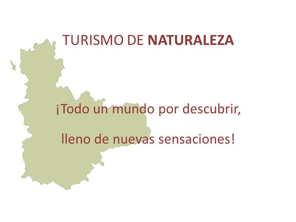 TURISMO DE NATURALEZA ¡Todo un mundo por descubrir, lleno de nuevas sensaciones!
