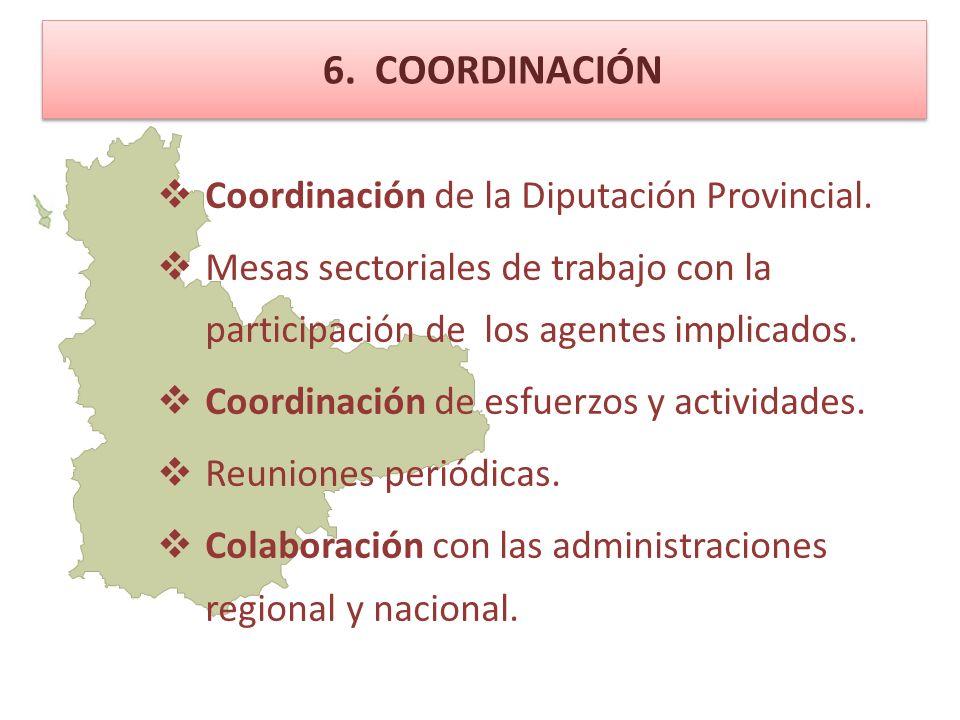 6. COORDINACIÓN Coordinación de la Diputación Provincial.