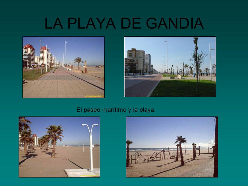 LA PLAYA DE GANDIA El paseo marítimo y la playa.