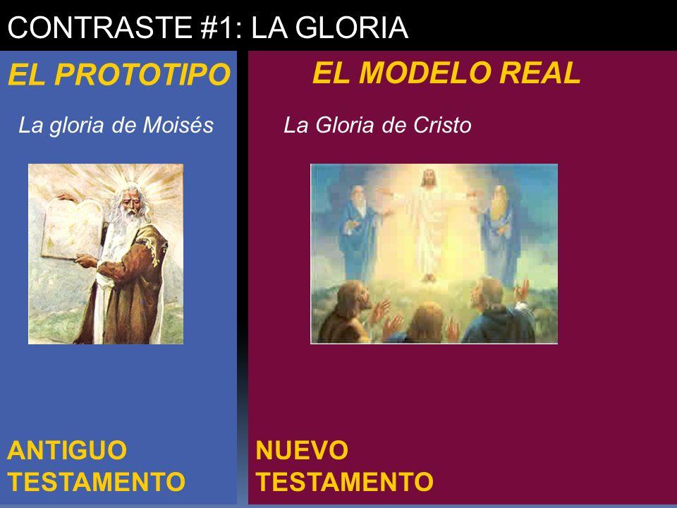 NUEVO TESTAMENTO ANTIGUO TESTAMENTO CONTRASTE #1: LA GLORIA EL PROTOTIPO EL MODELO REAL La gloria de Moisés -orden de Levi -Debilidad y pecado -- conf