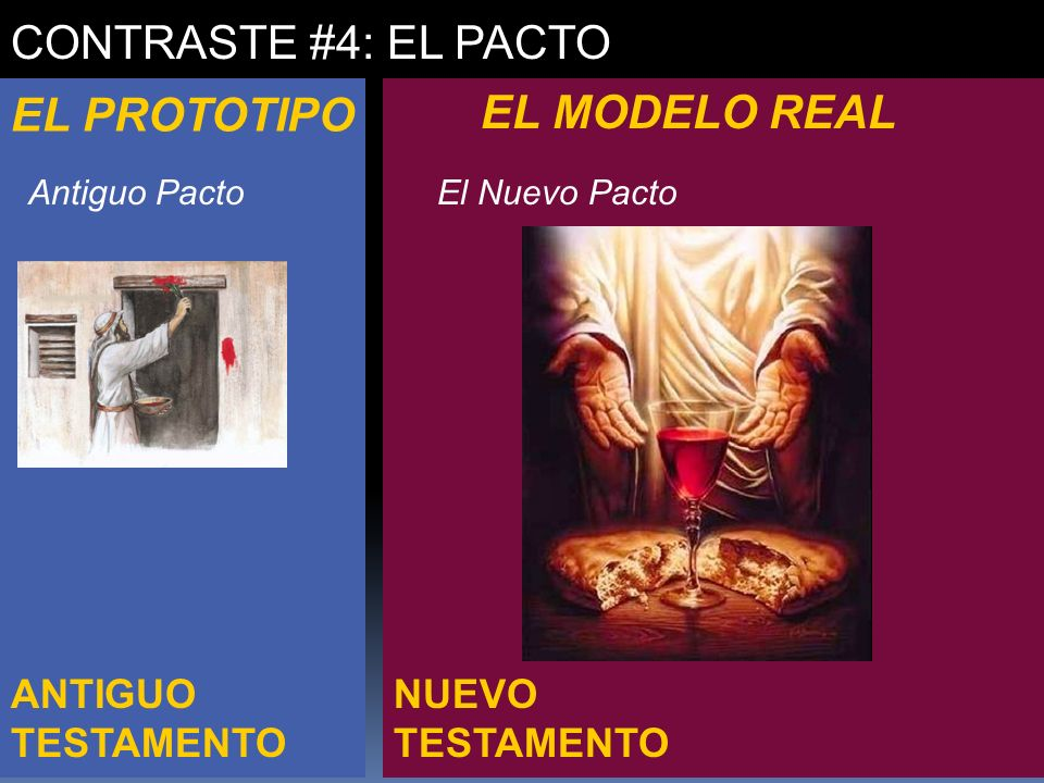 NUEVO TESTAMENTO ANTIGUO TESTAMENTO CONTRASTE #4: EL PACTO EL PROTOTIPO EL MODELO REAL Antiguo Pacto -orden de Levi -Debilidad y pecado -- confesar antes de ministrar -- traspasaba el velo una sola vez por ano - El Nuevo Pacto -orden de Melquisedec - Sacerdote / Rey - Sin pecado -- Completo hombre -- tentado en todo -- traspaso los cielos una vez para siempre -