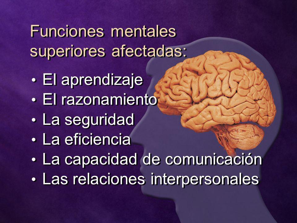 Funciones mentales superiores afectadas: El aprendizaje El razonamiento La seguridad La eficiencia La capacidad de comunicación Las relaciones interpe