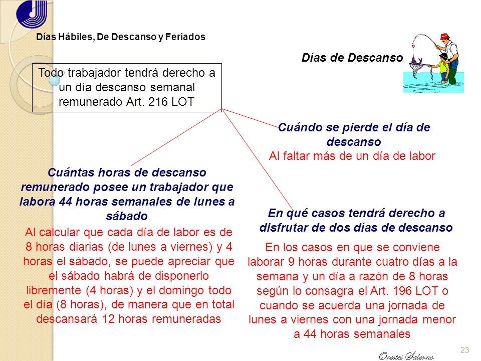 22 Orestes Salerno Días Hábiles, De Descanso y Feriados Días Hábiles Todos los días de año son hábiles para el trabajo, excepto los feriados Art. 211