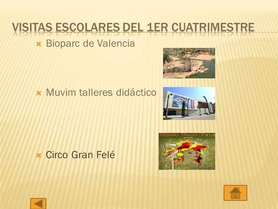 Bioparc de Valencia Muvim talleres didáctico Circo Gran Felé