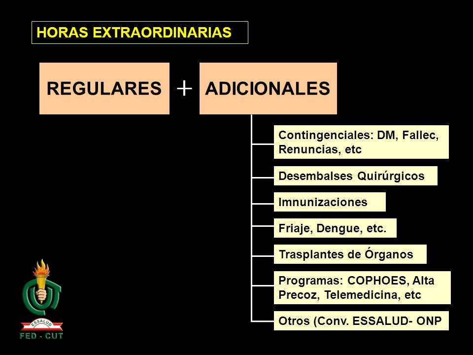 HORAS EXTRAORDINARIAS REGULARESADICIONALES Contingenciales: DM, Fallec, Renuncias, etc Programas: COPHOES, Alta Precoz, Telemedicina, etc Friaje, Deng