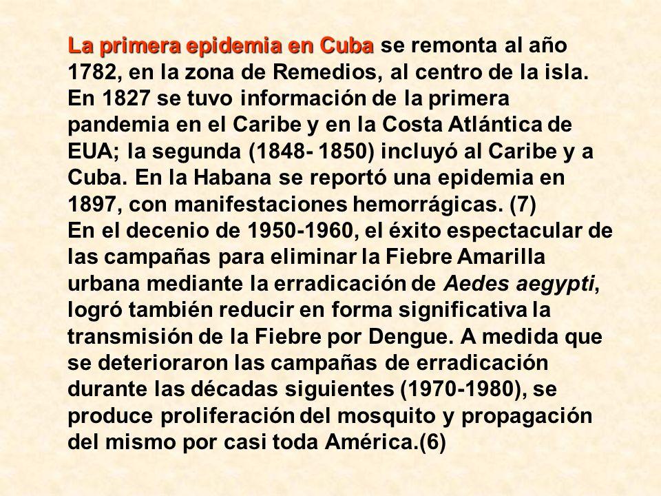 La primera epidemia de dengue clásico de Las Américas La primera epidemia de dengue clásico de Las Américas documentada en laboratorios estaba relacionada con el serotipo DEN- 3 y afectó a la Cuenca del Caribe y a Venezuela en 1963- 1964.