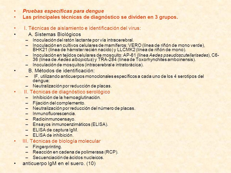 Pruebas específicas para dengue Las principales técnicas de diagnóstico se dividen en 3 grupos. I. Técnicas de aislamiento e identificación del virus: