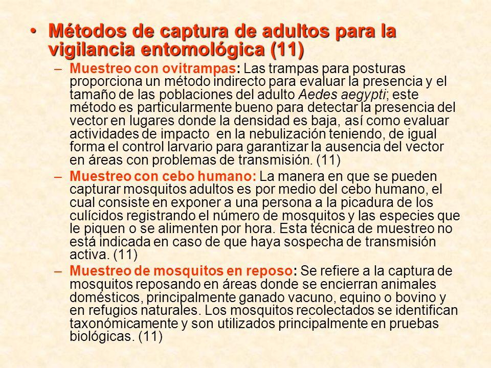 Métodos de captura de adultos para la vigilancia entomológica (11)Métodos de captura de adultos para la vigilancia entomológica (11) –Muestreo con ovi
