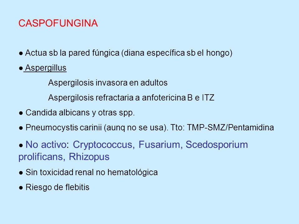 Actua sb la pared fúngica (diana específica sb el hongo) Aspergillus Aspergilosis invasora en adultos Aspergilosis refractaria a anfotericina B e ITZ