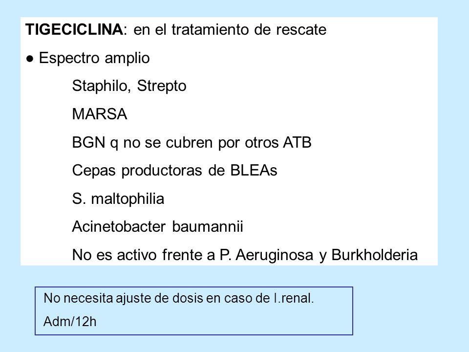 TIGECICLINA: en el tratamiento de rescate Espectro amplio Staphilo, Strepto MARSA BGN q no se cubren por otros ATB Cepas productoras de BLEAs S. malto