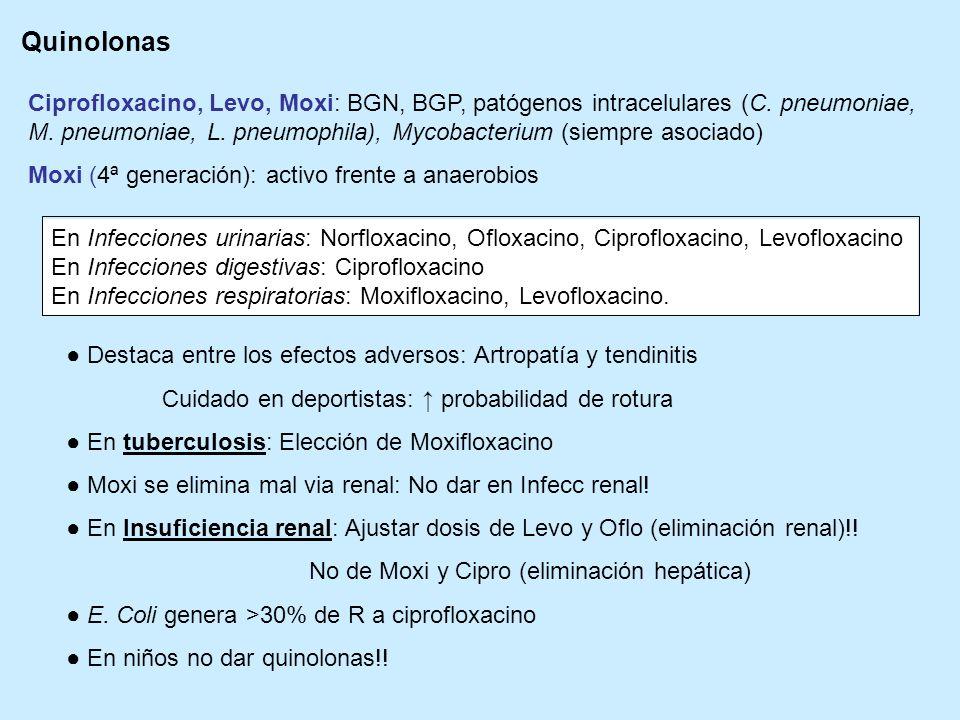 Quinolonas Ciprofloxacino, Levo, Moxi: BGN, BGP, patógenos intracelulares (C. pneumoniae, M. pneumoniae, L. pneumophila), Mycobacterium (siempre asoci