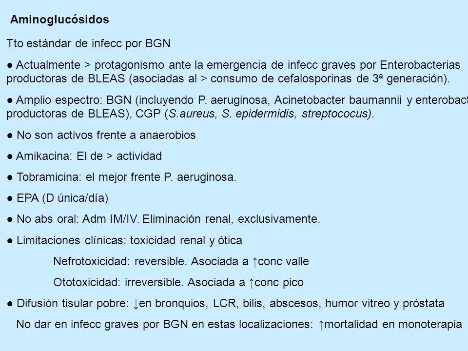 Aminoglucósidos Tto estándar de infecc por BGN Actualmente > protagonismo ante la emergencia de infecc graves por Enterobacterias productoras de BLEAS