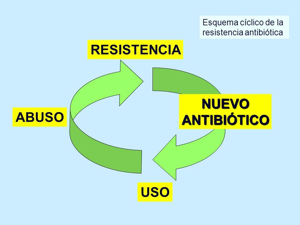 RESISTENCIA NUEVOANTIBIÓTICO USO ABUSO Esquema cíclico de la resistencia antibiótica