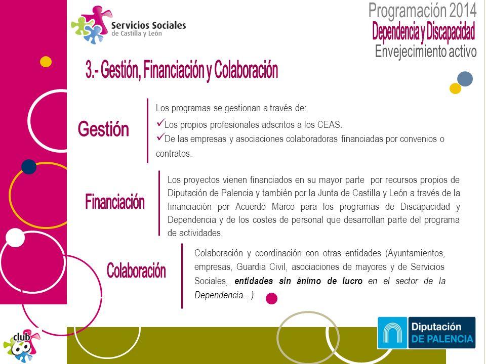 Los proyectos vienen financiados en su mayor parte por recursos propios de Diputación de Palencia y también por la Junta de Castilla y León a través de la financiación por Acuerdo Marco para los programas de Discapacidad y Dependencia y de los costes de personal que desarrollan parte del programa de actividades.