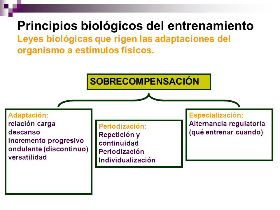 SOBRECOMPENSACIÓN Adaptación: relación carga descanso Incremento progresivo ondulante (discontinuo) versatilidad Periodización: Repetición y continuid