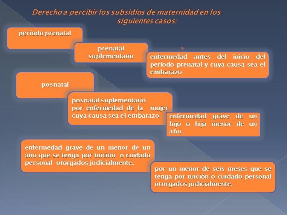 período prenatal prenatal suplementario enfermedad antes del inicio del período prenatal y cuya causa sea el embarazo posnatal posnatal suplementario