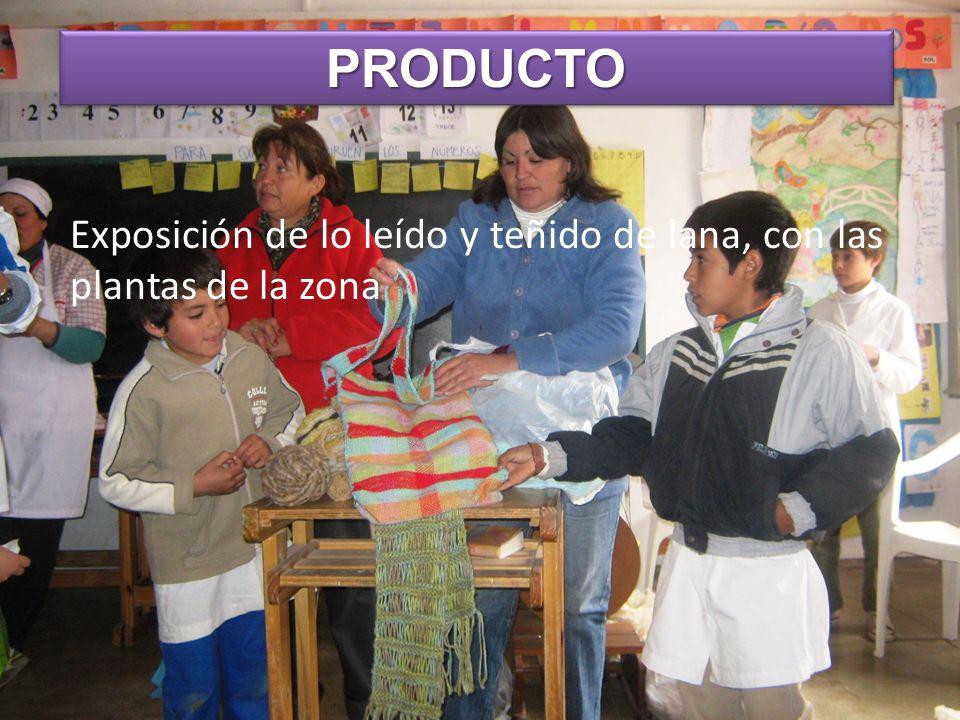 Exposición de lo leído y teñido de lana, con las plantas de la zona PRODUCTOPRODUCTO